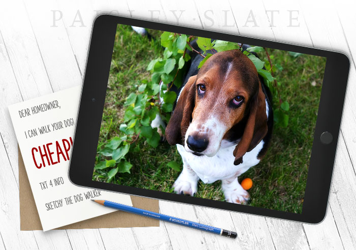 Photo of a dog on an iPad with a note from a sketchy dog walker